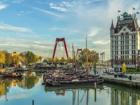 Study in Rotterdam