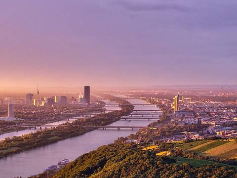 Study in Vienna