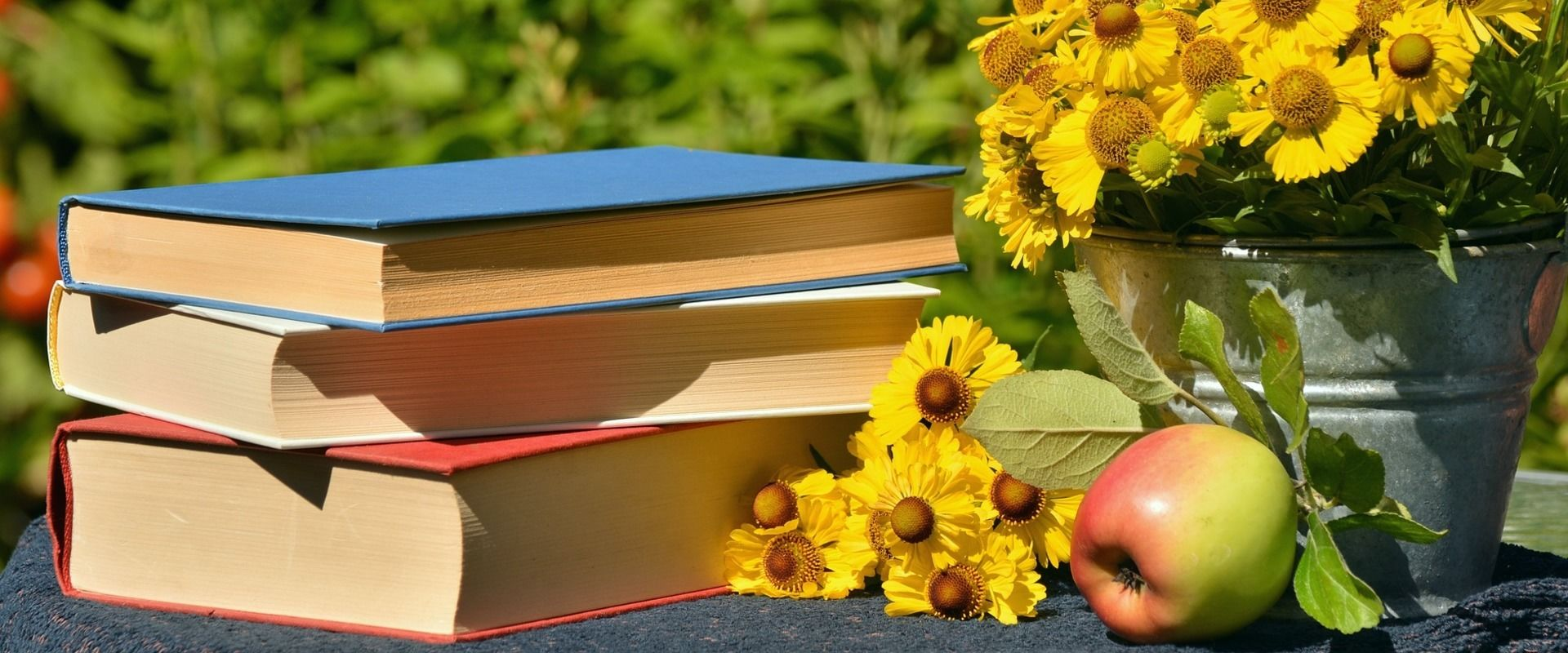 The top 8 books you should read before you study in Finland